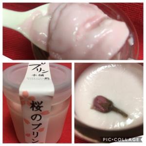 桜その3 侍プリンの「桜のプリン」