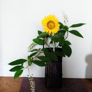 ベランダの花で #いけばな