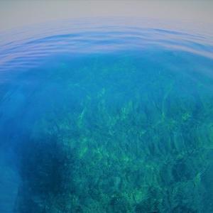 海ベタベタなのね。 そーなのね。