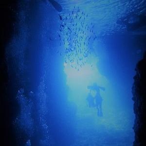 男洞窟カメ祭り。