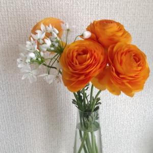 オレンジの花 ~タンゴの詩~
