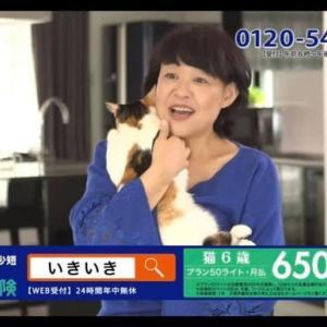 CM出演 〜 SBI いきいき少短 〜 ミーちゃんと一緒🐱