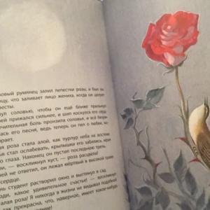 ワイルド絵本 と ピンクムーン