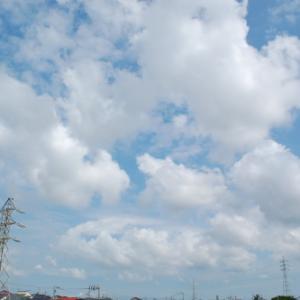 青空にもくもく(積雲)