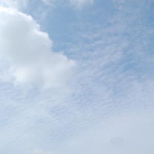 青空、そして暑い(積雲、高積雲)