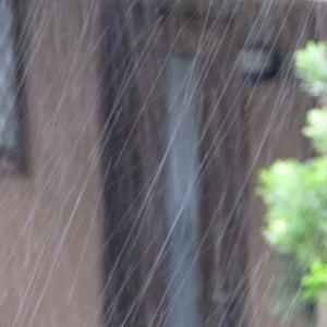 大型台風19号。