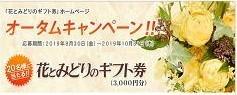 花とみどりのギフト券 「オータムキャンペーン!!」