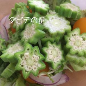 キラキラのサラダ