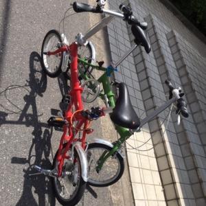 エリーゼお休み、のち自転車