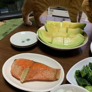 「ナスとひき肉の炒め物」「塩紅鮭」「庄内メロン」など・・・7月20日 夜メシ