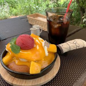 バラが見頃の「ミツバチガーデンカフェ」で限定の「マンゴーパンケーキ」(´∀`*)ウフフ