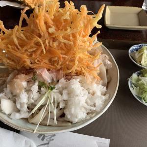 山のようにそびえたつ天ぷら&黒くてコシのある唯一無二のうどん、新庄市「てる井」はやっぱり特別な店!