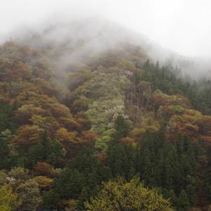 春の山、雨のち晴