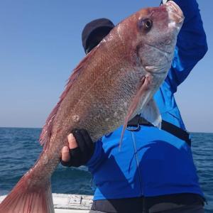 2020/04/04 近海タイラバ&ライトジギングの釣果