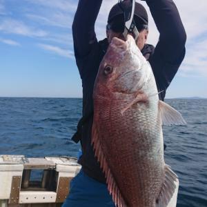 2020/09/20 近海タイラバ&根魚&ライトジギングの釣果