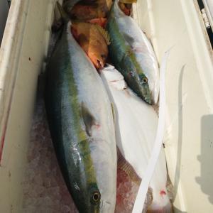 2021/03/14 近海タイラバ&ライトジギングの釣果