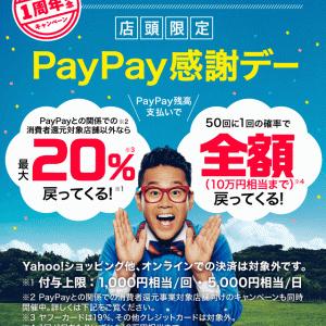 ウジャトでも本日は「PayPay感謝デーキャンペーン」開催!!