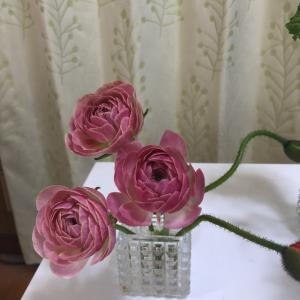 お花の定期便 - 春の花が届いた