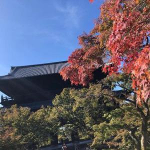 京都:南禅寺から哲学の道を散策
