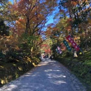 赤山禅院 大阿闍梨様と数珠供養と紅葉