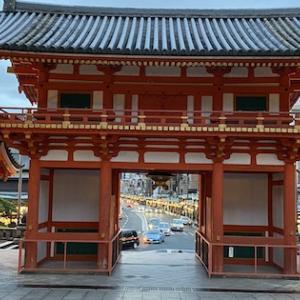 【京都】ここ最近の様子