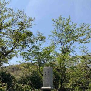 田中絹代さんのお墓