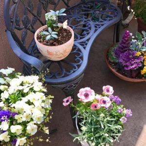 春の庭 目覚めの季節