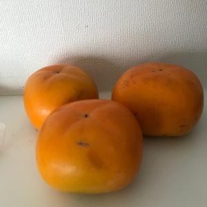 食欲の【柿】到来!!