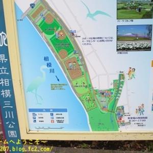 お初の公園へGO @県立相模三川公園