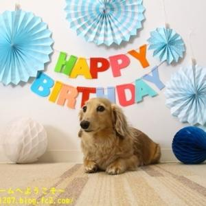 Happy Birthday ノエルっち♪