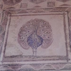 キプロス紀行 ~ ディオニソスの館の動物のモザイク。