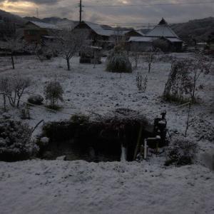 初雪、初積雪