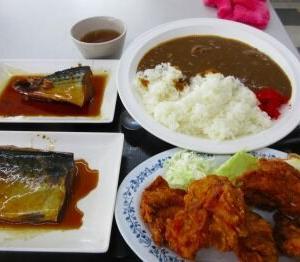 鯖鯖鶏カレー