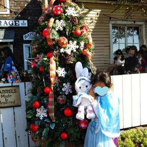 クリスマスの ディズニーシー マイフレンドダッフィーを鑑賞♪@オリエンタルランド株主優待でインパ