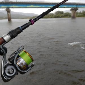 【 鮭 】鮭調査2nd 越後荒川