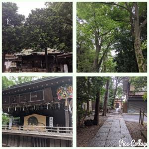 調神社と玉蔵院