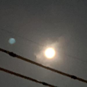8月1週間の動画配信と満月