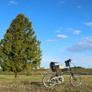 【ポタれどもDiary-8】天晴れ、秋晴れ。
