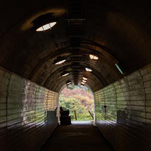 トンネルの向こう。。。