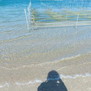 海を見た私