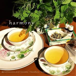 """ありがとうございました「寺ット.アート」のお話:Catch up about """"harmony - terratto. art"""" in Hosenji, Waseda"""