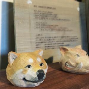 2階ギャラリーの看板犬