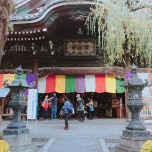 400年続く、旧七夕会大華道展 in 京都【いけばな池坊】
