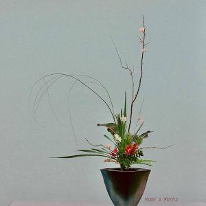 いけばなでクリスマスの演出★リューカデンドロンの立花【いけばな池坊】