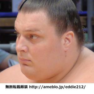 平成25年7月名古屋場所 星取表【舛東欧】