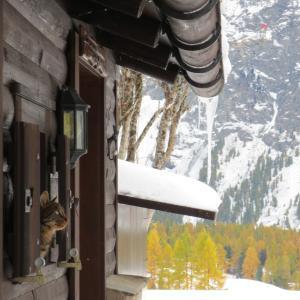 今週の一枚「スイス・黄葉のエンガディン」