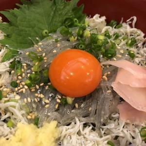 江の島でしらす丼と海鮮