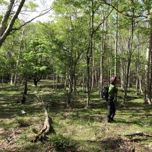 八方ヶ原と八方沼 栃木県内の方癒しの場所