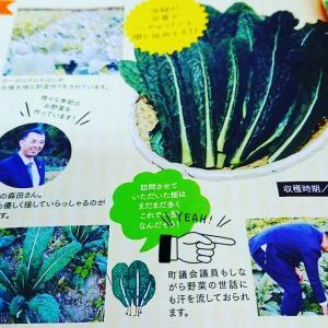 月刊ぷらざと、もりた浩文の一般質問