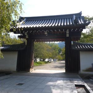 醍醐寺~伏見桃山城~御香宮神社